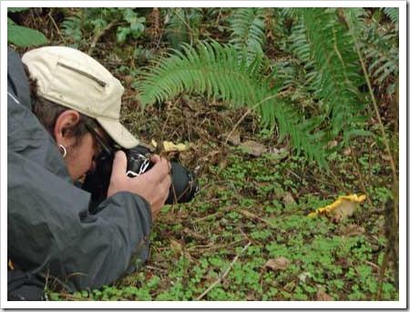 Tobiah photographing a mushroom